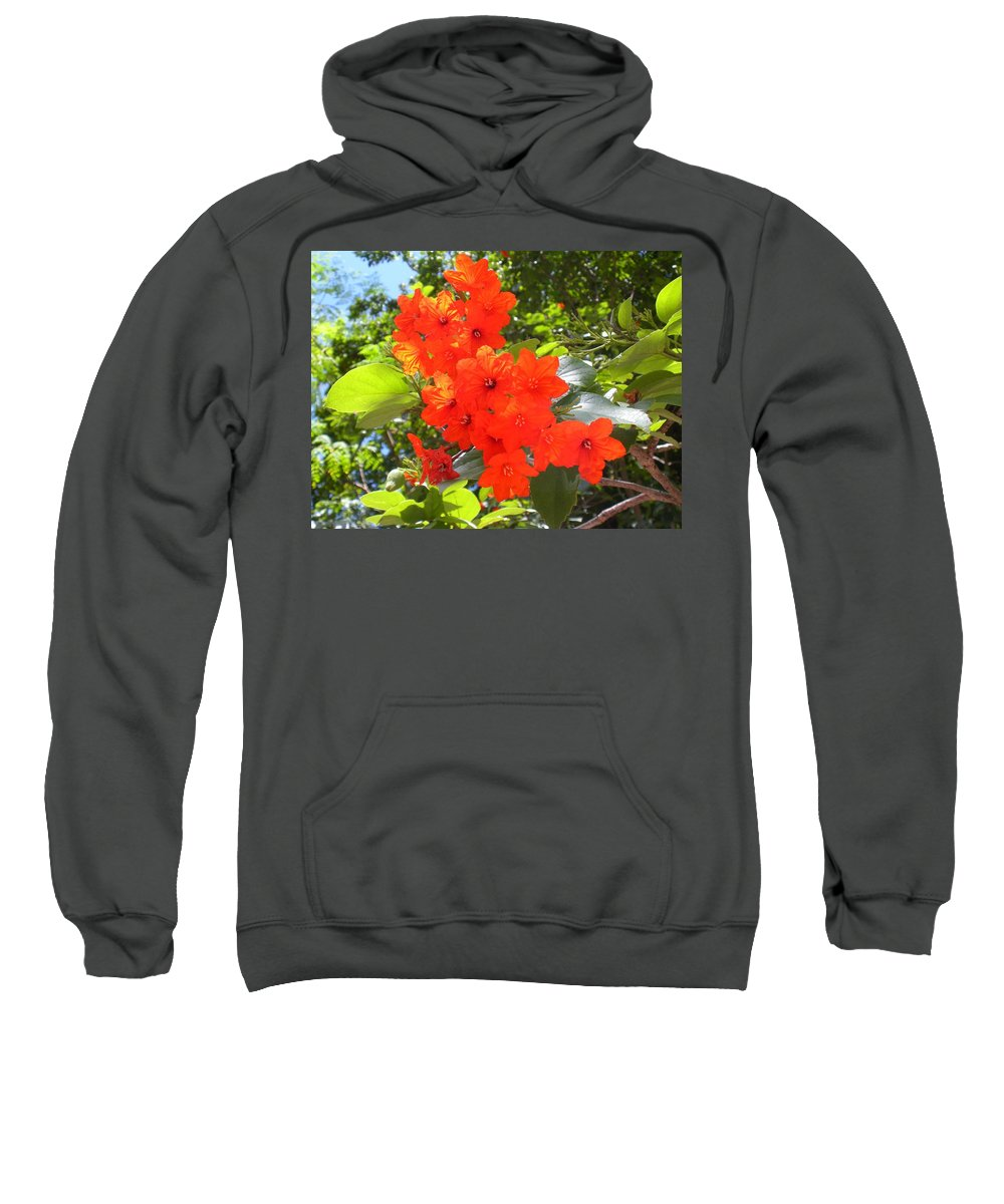 Flowers Sweatshirt featuring the photograph Brilliant Blossoms by Maria Bonnier-Perez