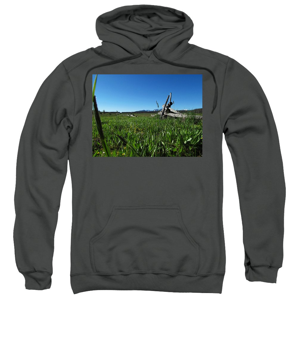 Nature Sweatshirt featuring the photograph Broken Fence by Dan Dixon