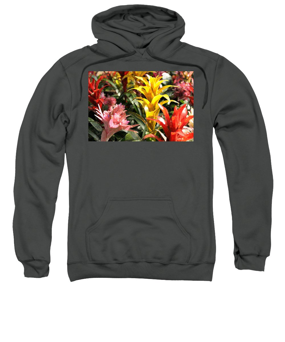 Impressionism Sweatshirt featuring the photograph Bromeliads by Steven Sparks