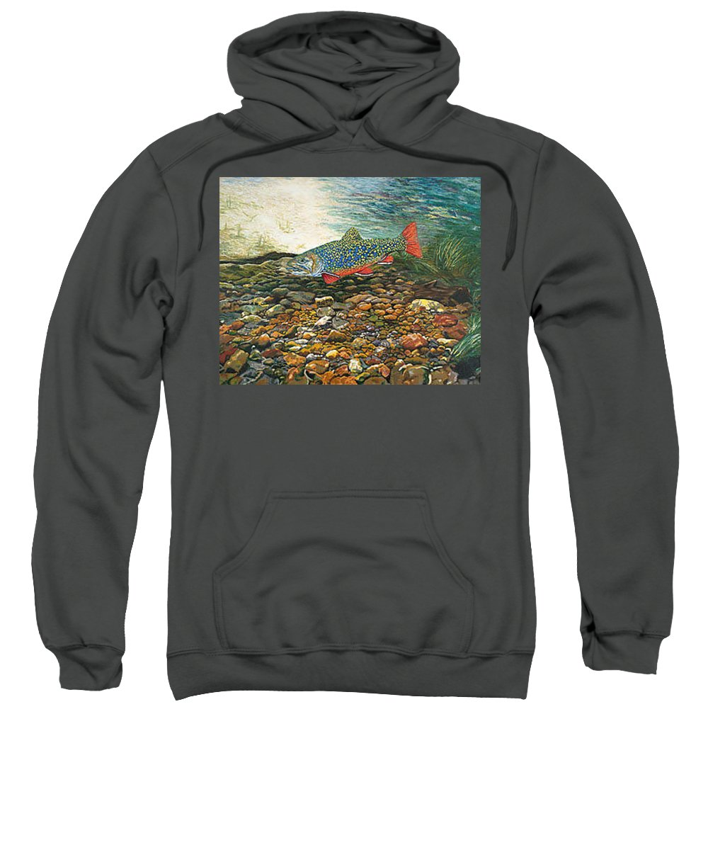 Nature Sweatshirt featuring the painting Brook Trout Art Fish Art Nature Wildlife Underwater by Baslee Troutman