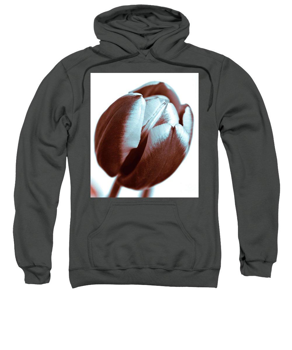 Brown Tulip Sweatshirt featuring the photograph Brown Tulip by Silva Wischeropp