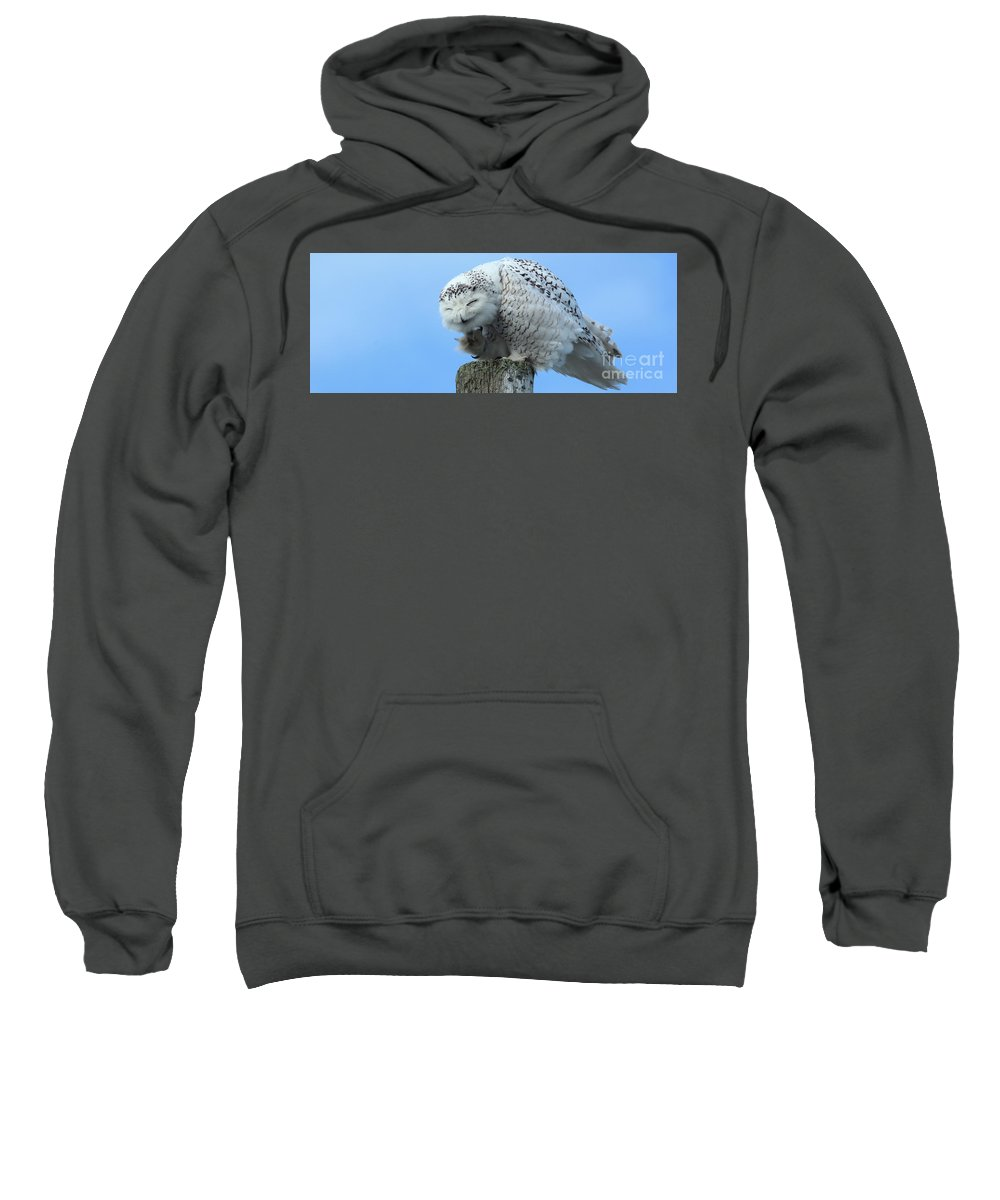Snowy Sweatshirt featuring the photograph Brunswick Coffee Mug by Laurie Pocher