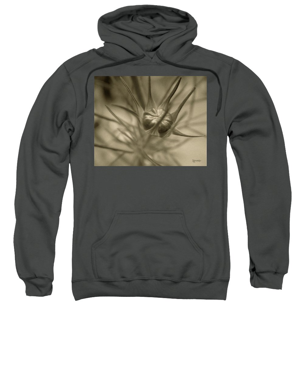 Bud Sweatshirt featuring the photograph Budding Beauty by RC DeWinter