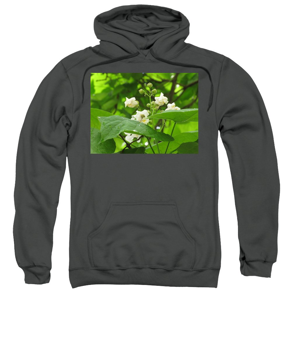 Flowers Sweatshirt featuring the photograph Budding by Carol McGinn