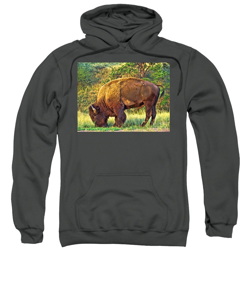 Custer State Park Sweatshirt featuring the photograph Buffalo Custer State Park by Tommy Anderson