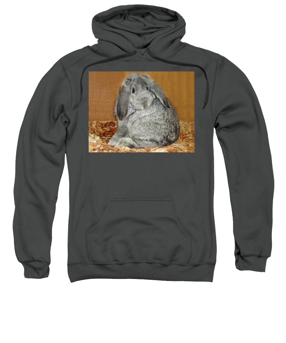 Bunny Sweatshirt featuring the photograph Bunny by Gina De Gorna