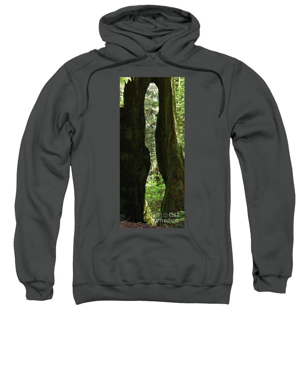 Burnt Tree Sweatshirt featuring the photograph Burnt Tree Sculpture by Bruce Chevillat