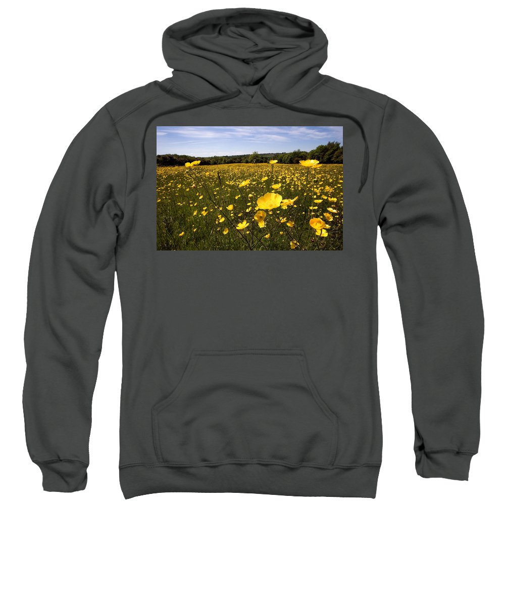 Buttercups Sweatshirt featuring the photograph Buttercup Field by Bob Kemp