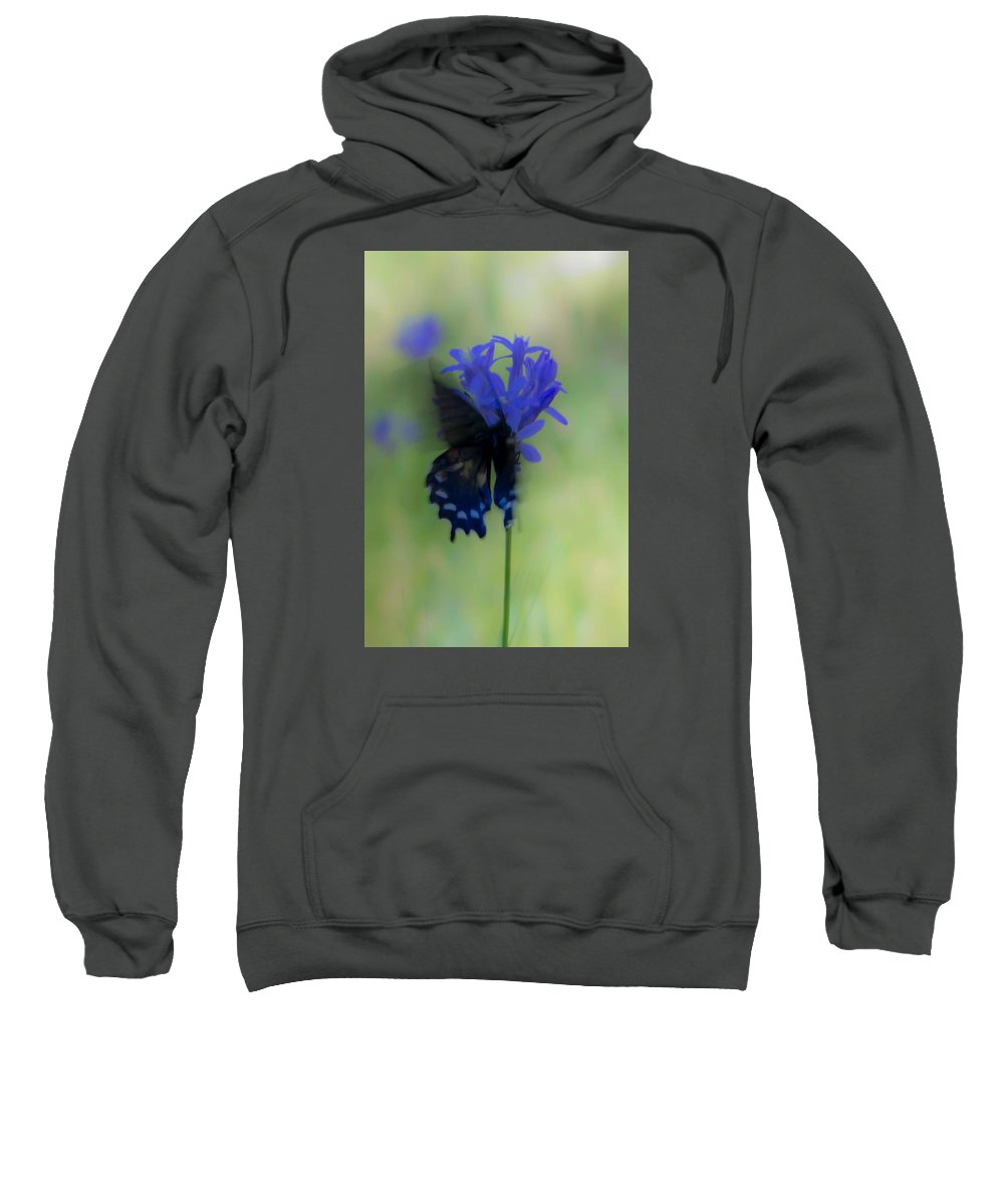 Sweatshirt featuring the photograph Butterfly 5 by Reed Tim