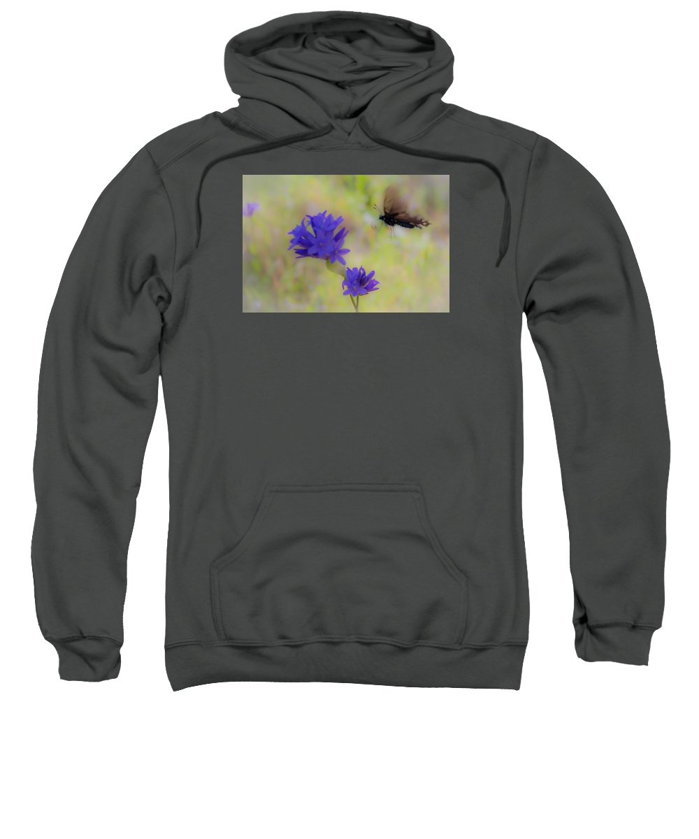 Sweatshirt featuring the photograph Butterfly 6 by Reed Tim