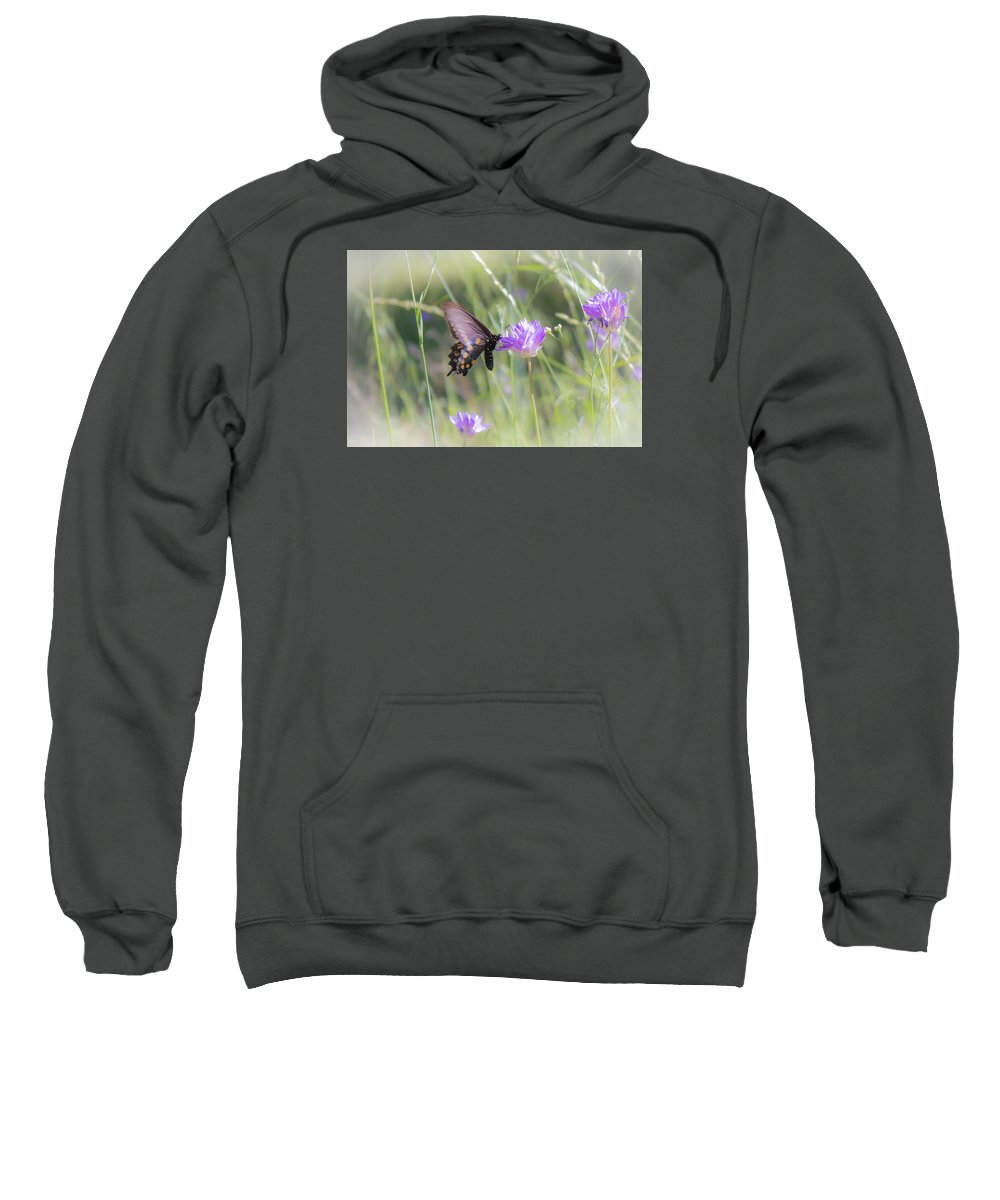 Sweatshirt featuring the photograph Butterfly 7 by Reed Tim