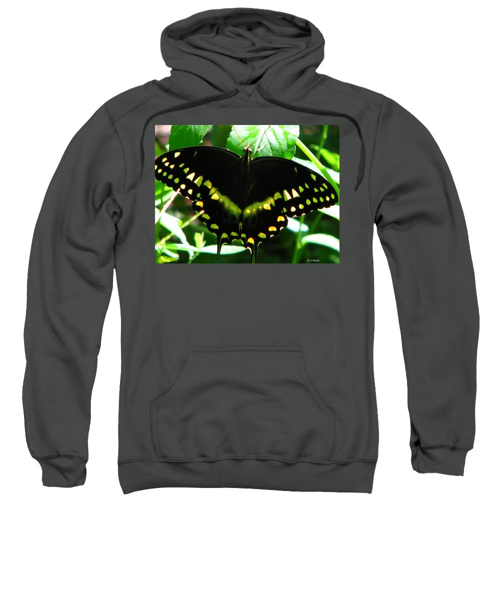 Patzer Sweatshirt featuring the photograph Butterfly Art 3 by Greg Patzer