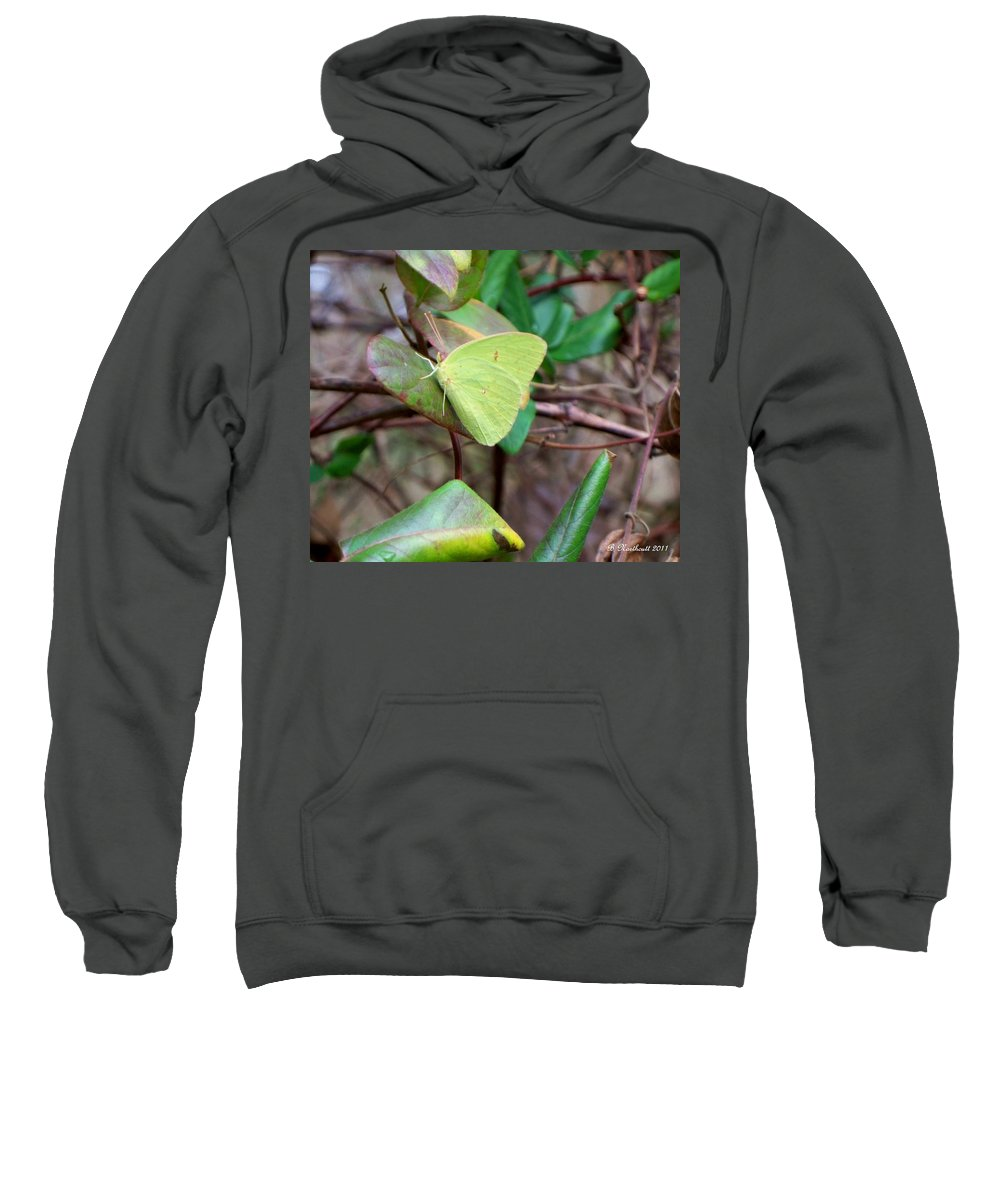 Butterfly Sweatshirt featuring the photograph Butterfly Camouflage by Betty Northcutt