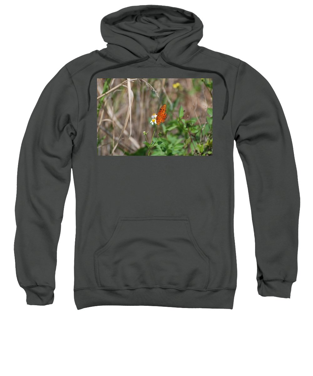 Nature Sweatshirt featuring the photograph Butterfly On Flower by Rob Hans