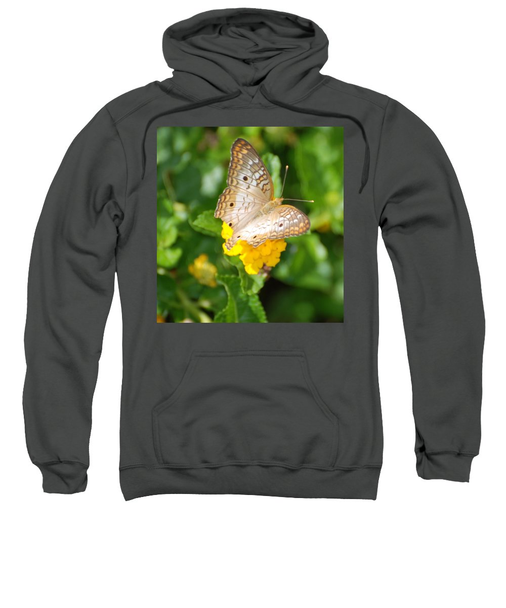 Butterfly Sweatshirt featuring the photograph Butterflywith Dots by Rob Hans