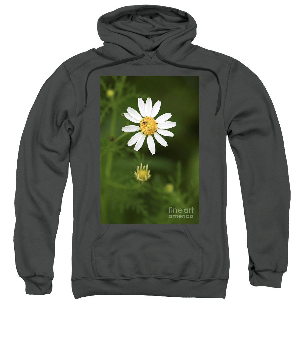 Flower Sweatshirt featuring the photograph By The Pond by Deborah Benoit
