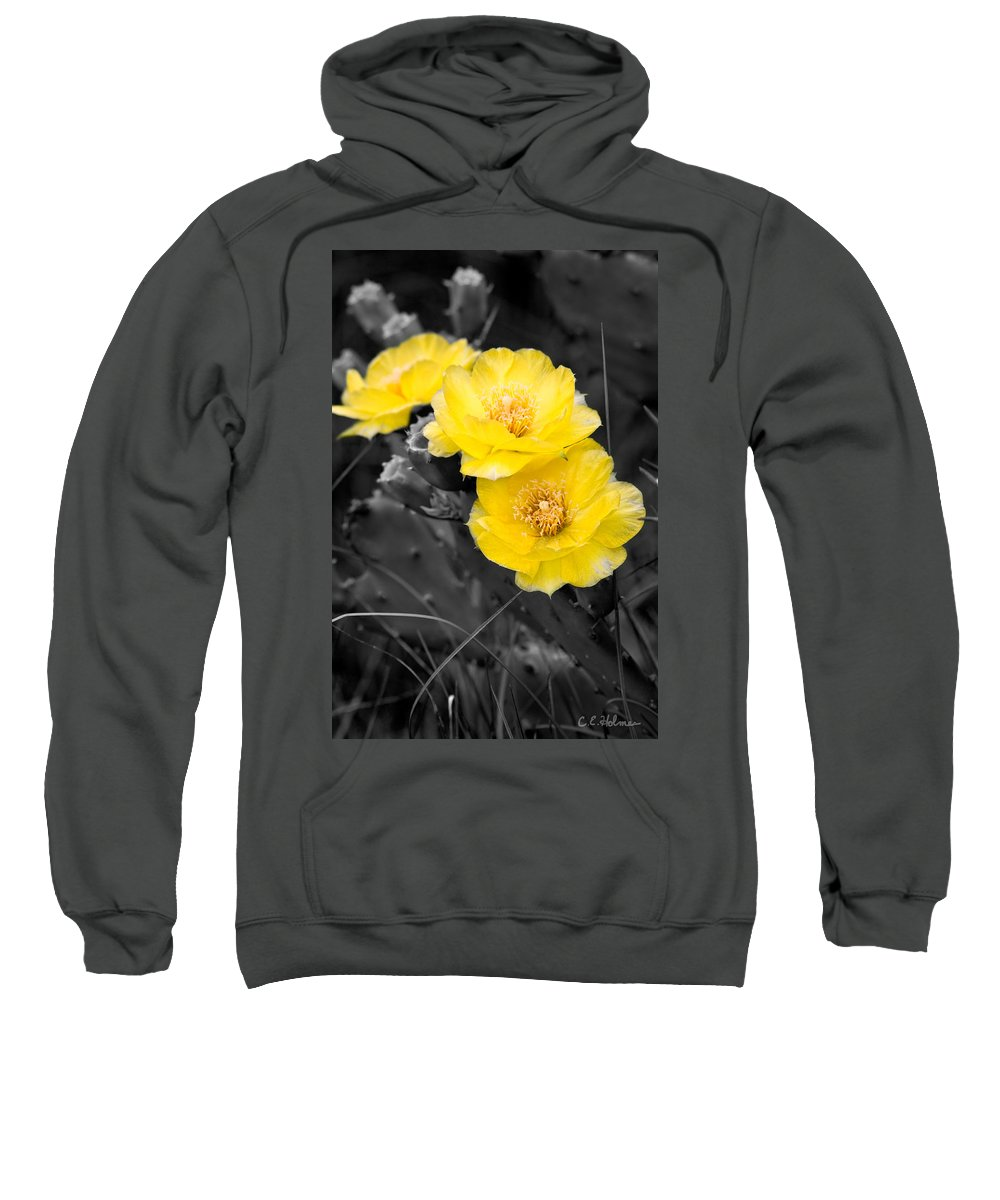Cactus Sweatshirt featuring the photograph Cactus Blossom by Christopher Holmes