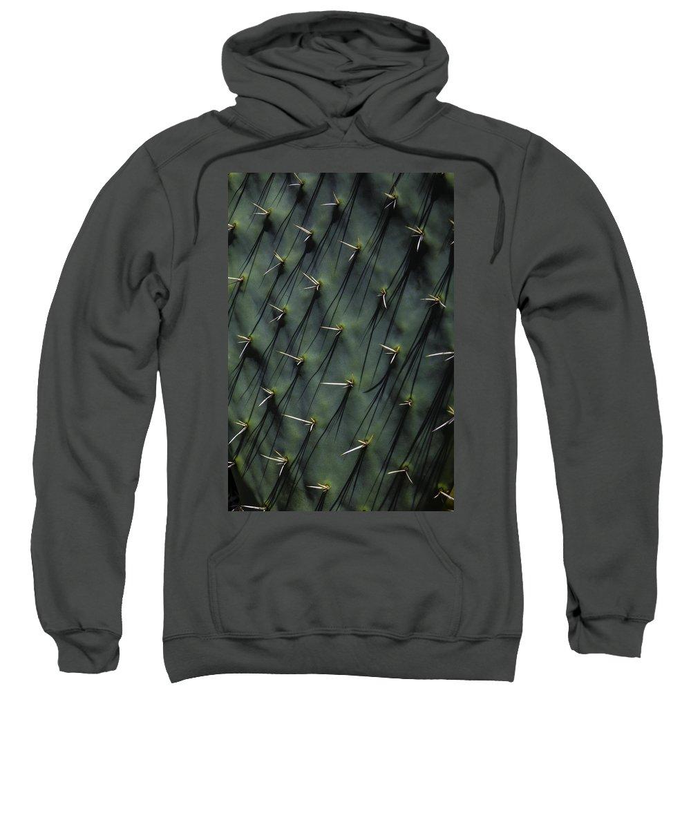Cactaceae Hooded Sweatshirts T-Shirts