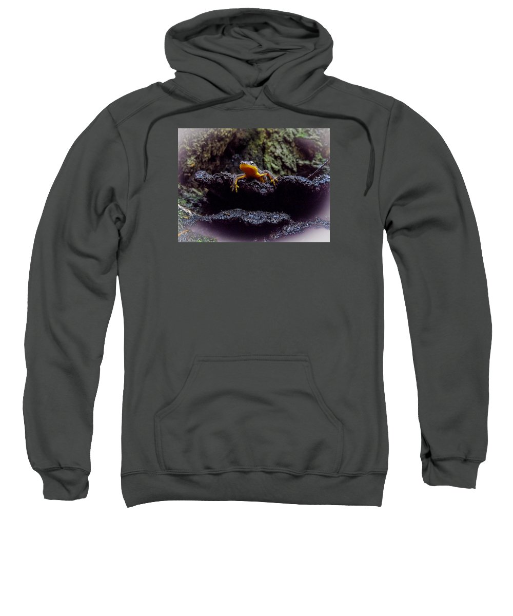 Sweatshirt featuring the photograph California Newt 2 by Reed Tim