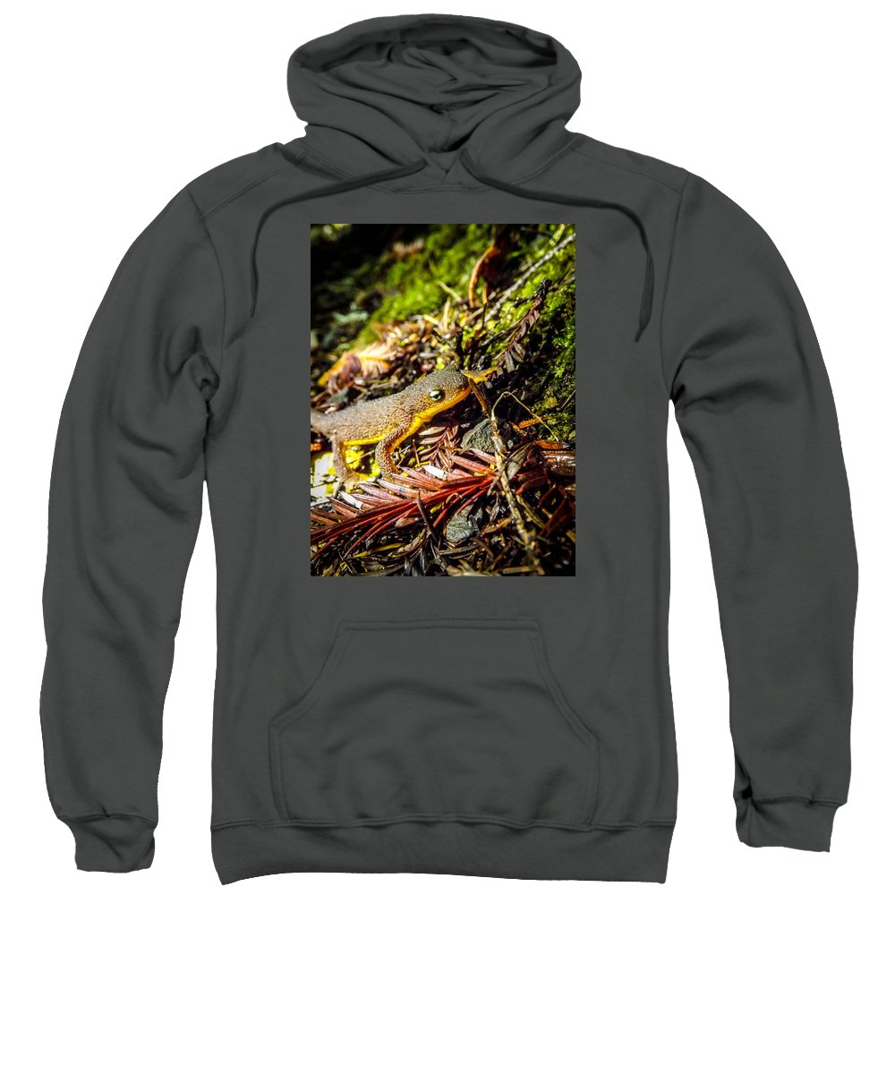 Sweatshirt featuring the photograph California Newt 3 by Reed Tim