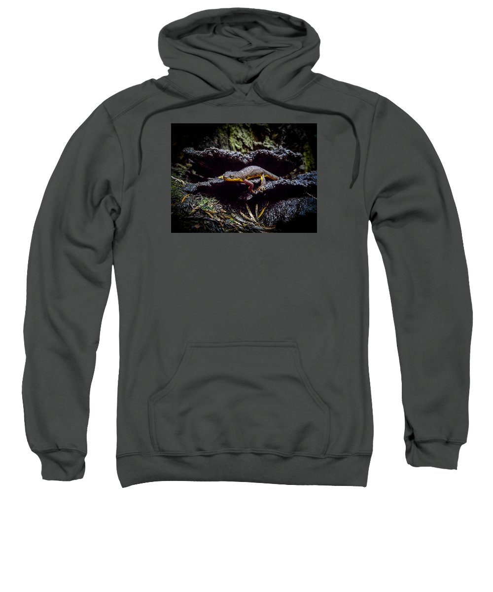 Sweatshirt featuring the photograph California Newt by Reed Tim