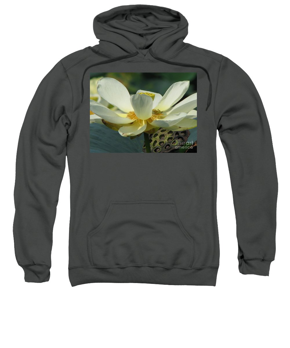 Lotus Sweatshirt featuring the photograph Calm by Amanda Barcon