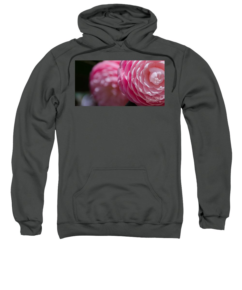 Closeup Sweatshirt featuring the photograph Camellia 2 by Andrea Anderegg