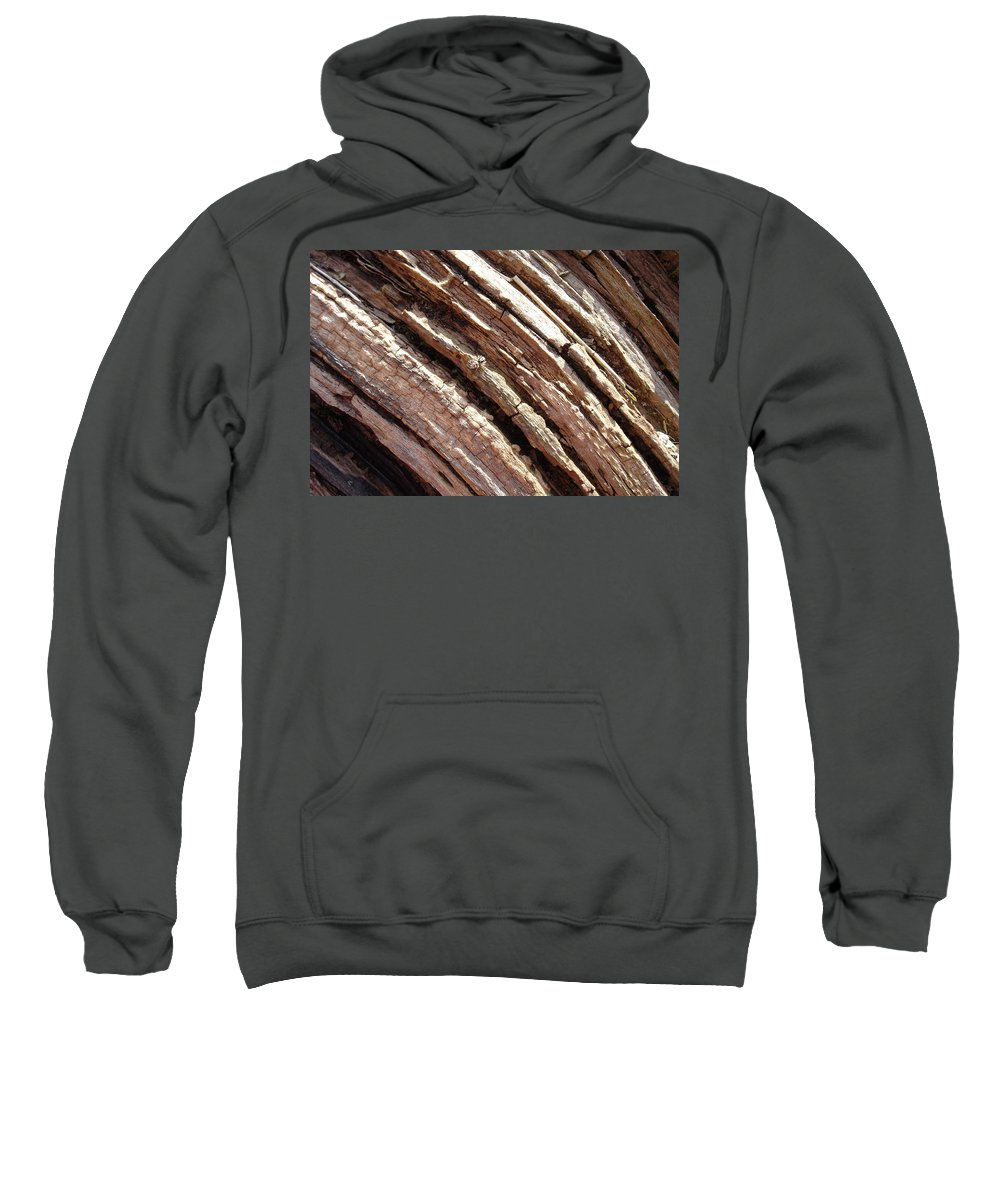 Tree Sweatshirt featuring the photograph Camoflage by Susan Baker