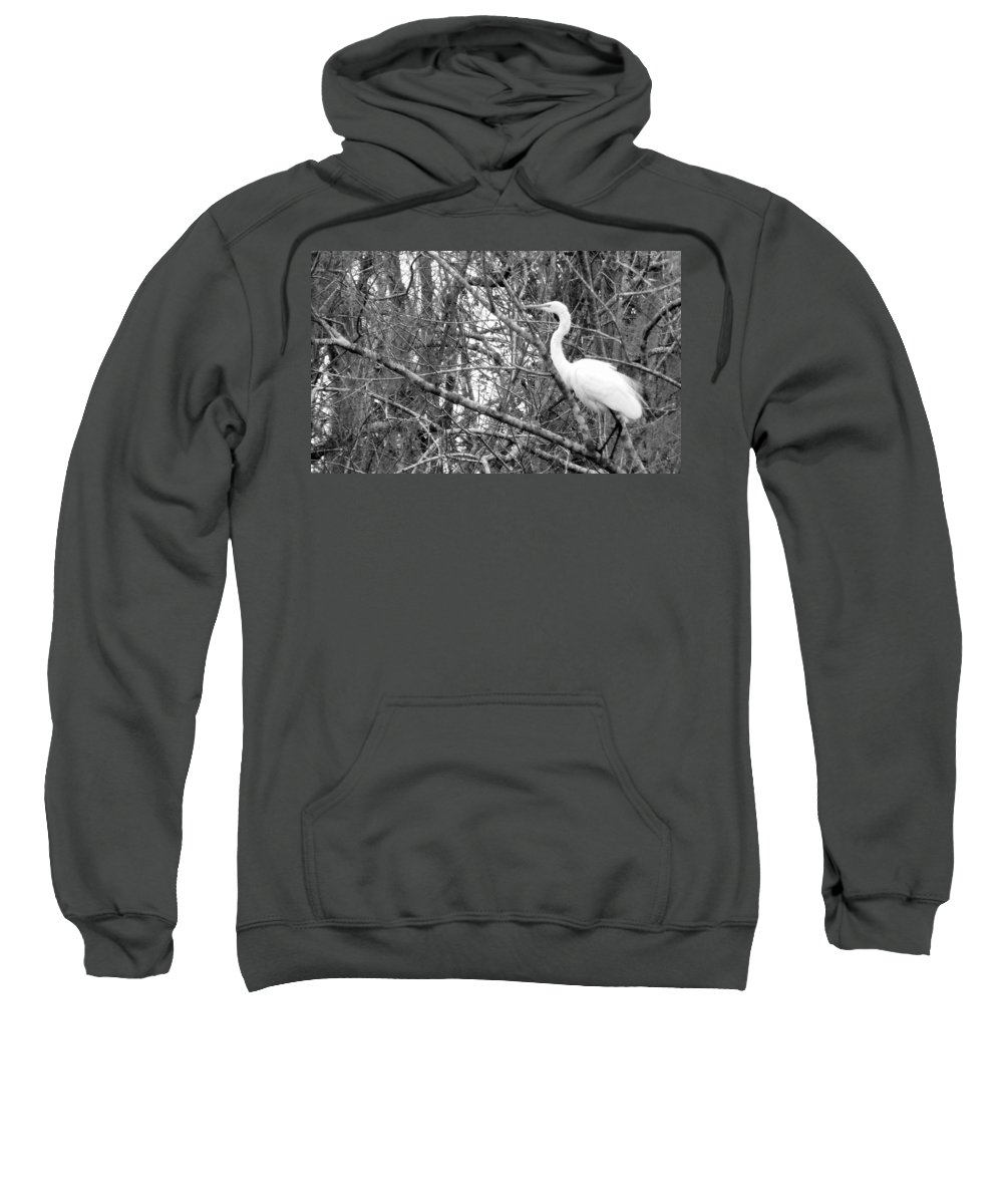 Bird Sweatshirt featuring the photograph Camouflage by Ed Smith