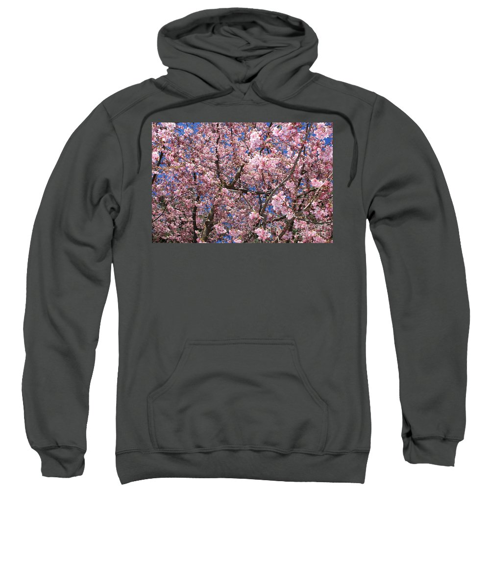 Canvas Of Pink Blossoms Sweatshirt featuring the photograph Canvas Of Pink Blossoms by Carol Groenen