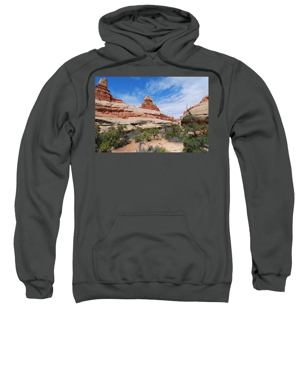 Canyonlands National Park Sweatshirt featuring the photograph Canyonlands Spring Landscape by Cascade Colors