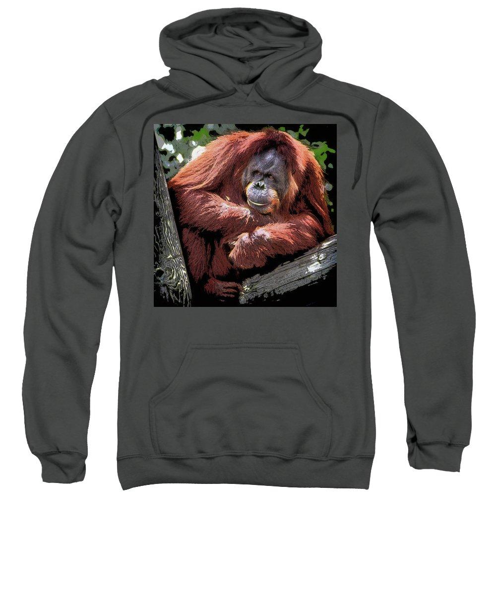 Orangutan Sweatshirt featuring the painting Cartoon Comic Style Orangutan Sitting In Tree Fork by Elaine Plesser