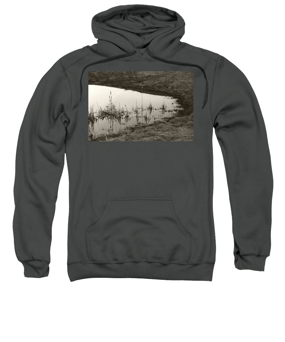 Sweatshirt featuring the photograph Cat Tail Reflections by Heather Kirk