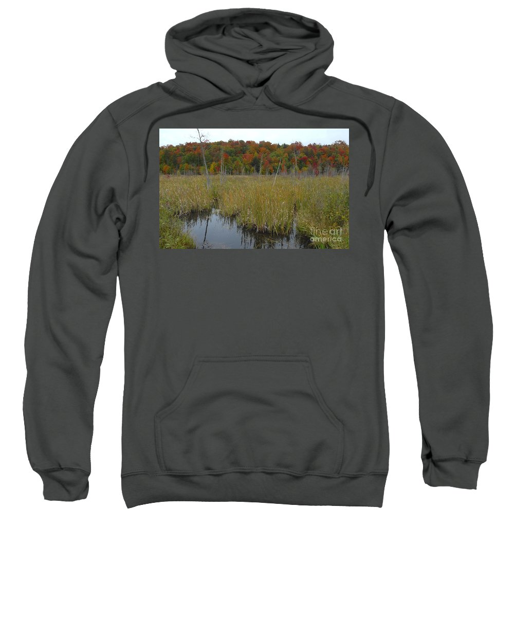 Cattails Sweatshirt featuring the photograph Cattails by David Lee Thompson