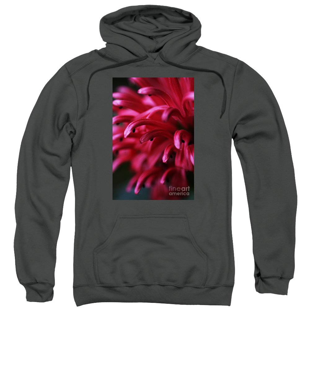 Pink Sweatshirt featuring the photograph Caught In The Dream by Linda Shafer