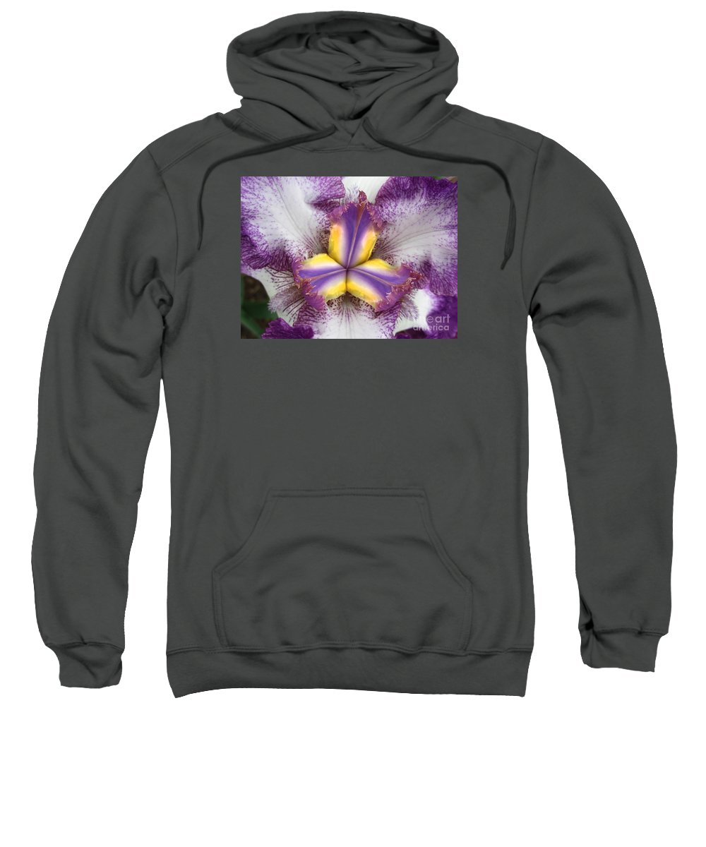 Iris Sweatshirt featuring the photograph Centered by Cecilia Swatton