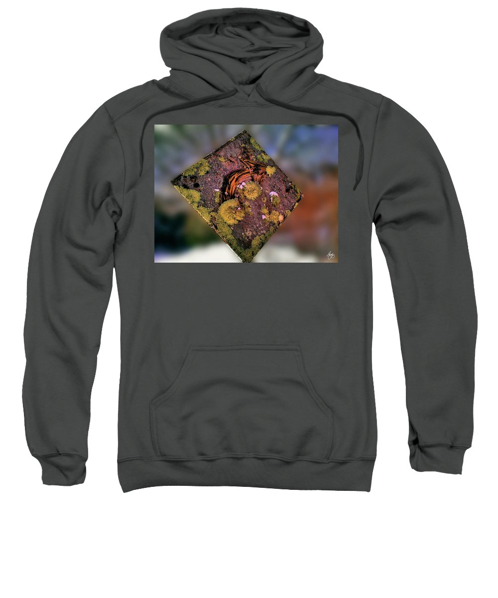 Street Sign Sweatshirt featuring the photograph Changing Course by Wayne King