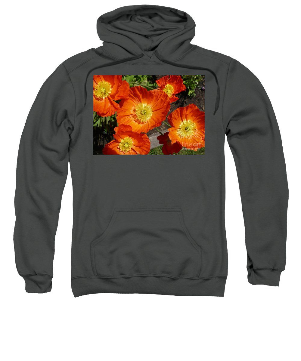 Card Sweatshirt featuring the photograph Cheerful Orange Flowers by Carol Groenen