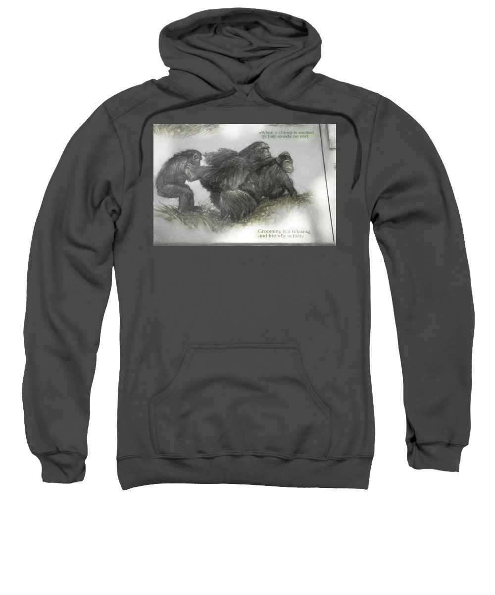 Chimps Sweatshirt featuring the photograph Chimps Sketch by Melvin Busch