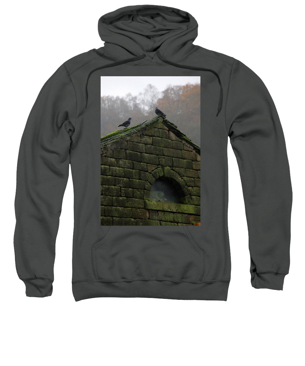 Hebden Sweatshirt featuring the photograph Chin Wag by Jez C Self