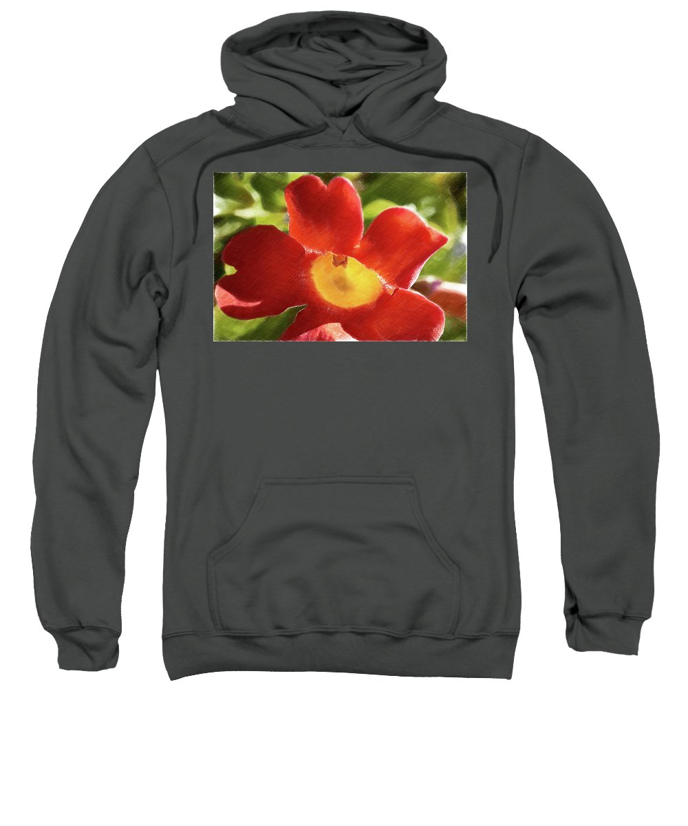 Trumper Flower Sweatshirt featuring the photograph Chinese Trumpet Flower In La Mesa California by Kenneth Roberts