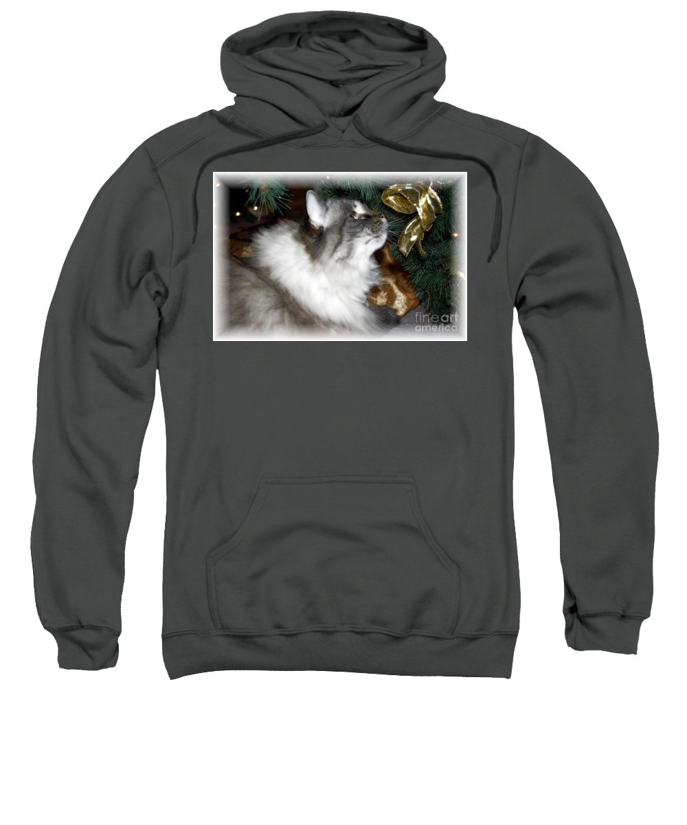 Christmas Sweatshirt featuring the photograph Christmas Kitty by Debbi Granruth
