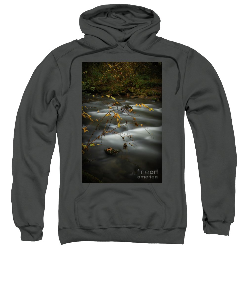 Clear Creek Sweatshirt featuring the photograph Clear Creek by Zach Deets