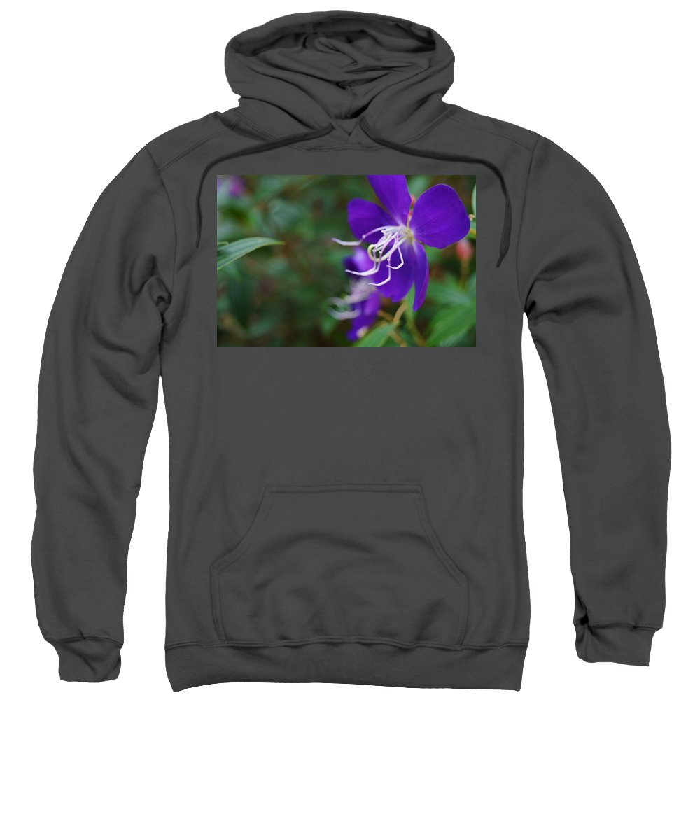 Clematis On The Side Sweatshirt featuring the photograph Clematis On The Side by Warren Thompson