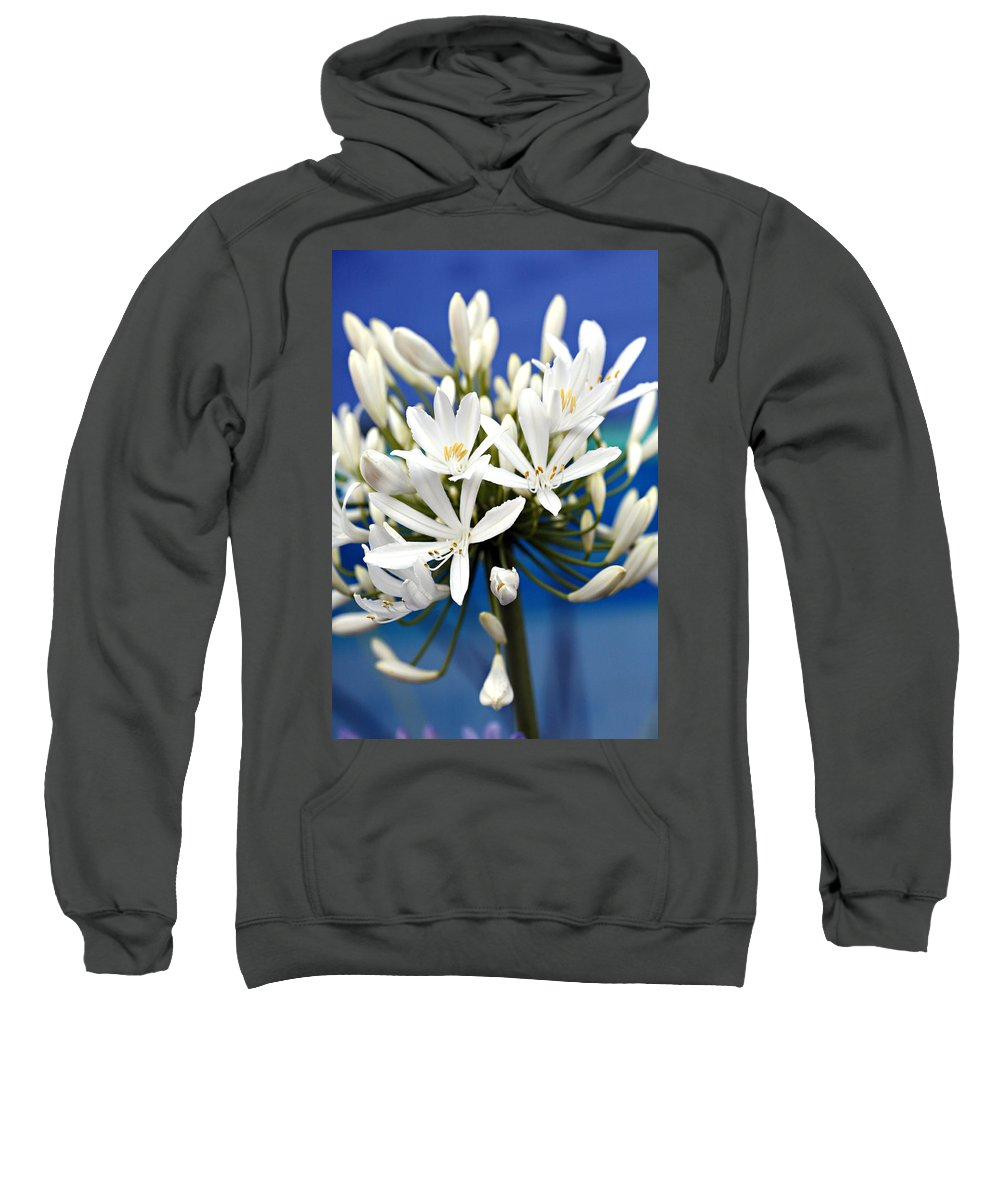 Closeup Sweatshirt featuring the photograph Closeup White Californian Flower by Marilyn Hunt