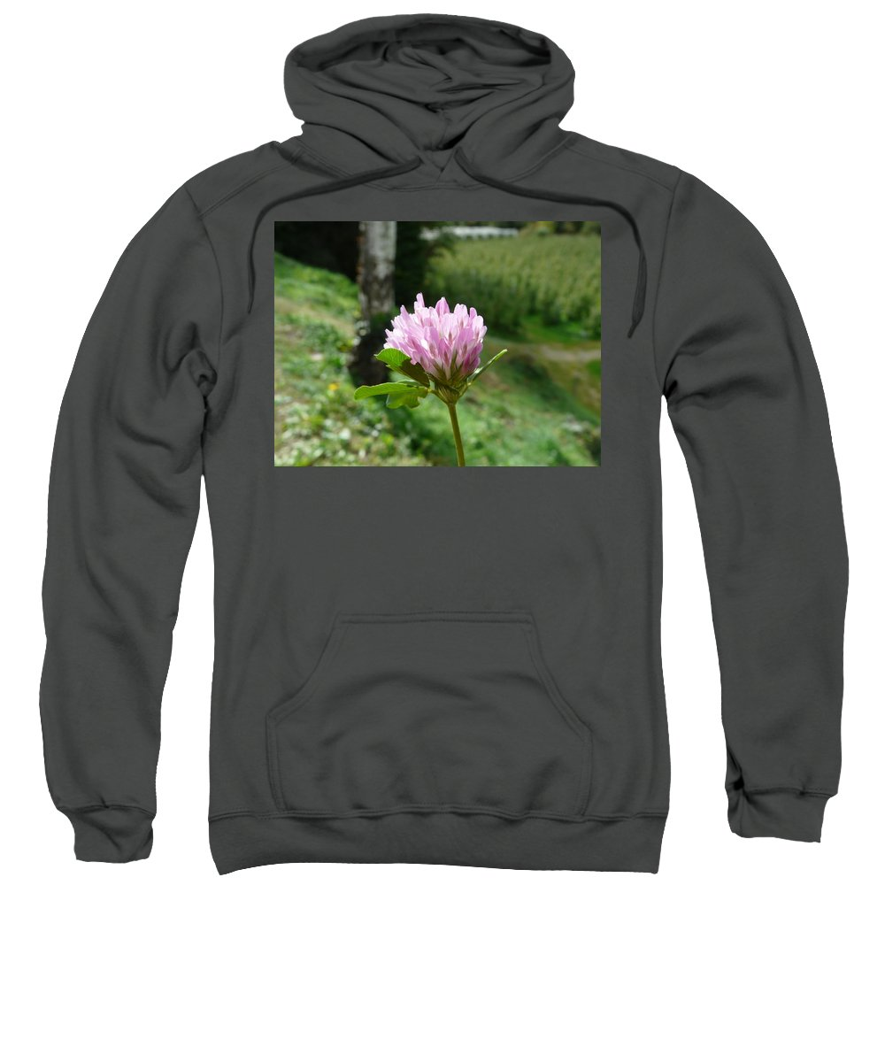 Red Sweatshirt featuring the photograph Clover 1 by Valerie Ornstein