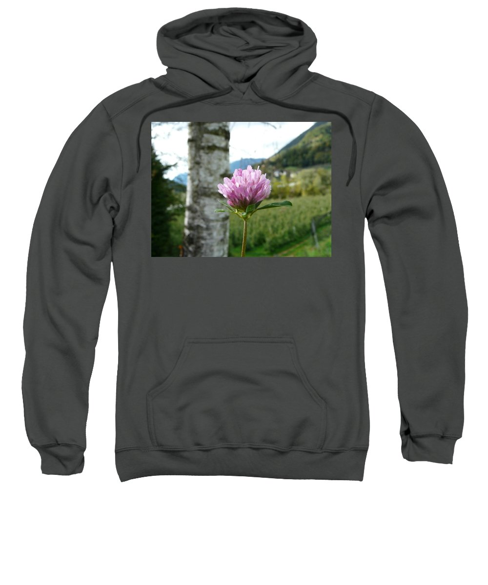Red Sweatshirt featuring the photograph Clover 2 by Valerie Ornstein