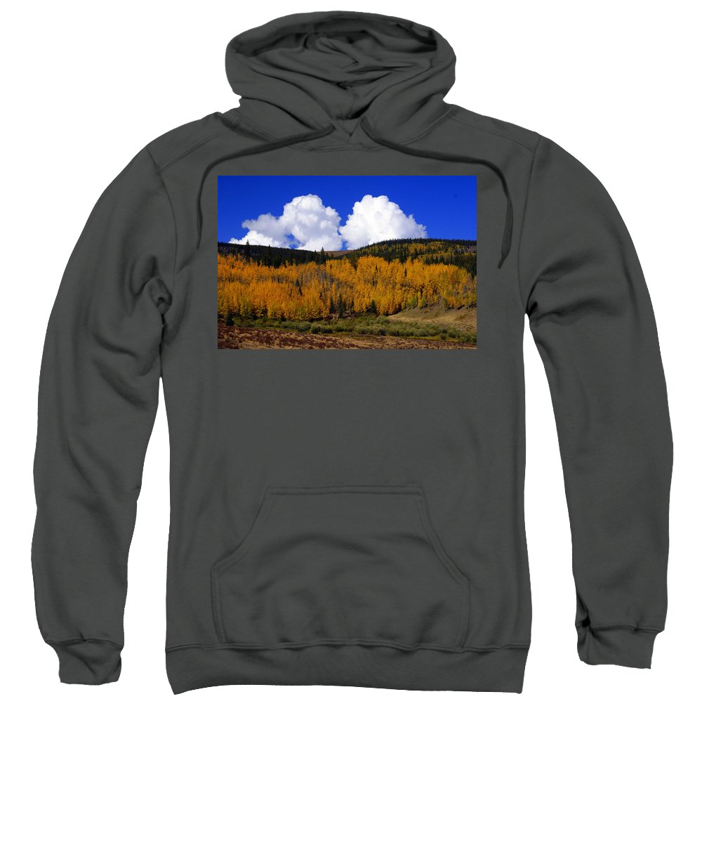 Fall Colors Sweatshirt featuring the photograph Colorado Fall 2 by Marty Koch