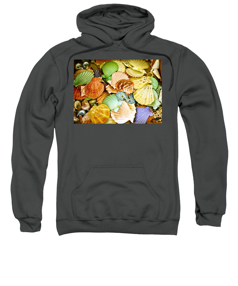 Shell Sweatshirt featuring the photograph Colored Shells by Marilyn Hunt