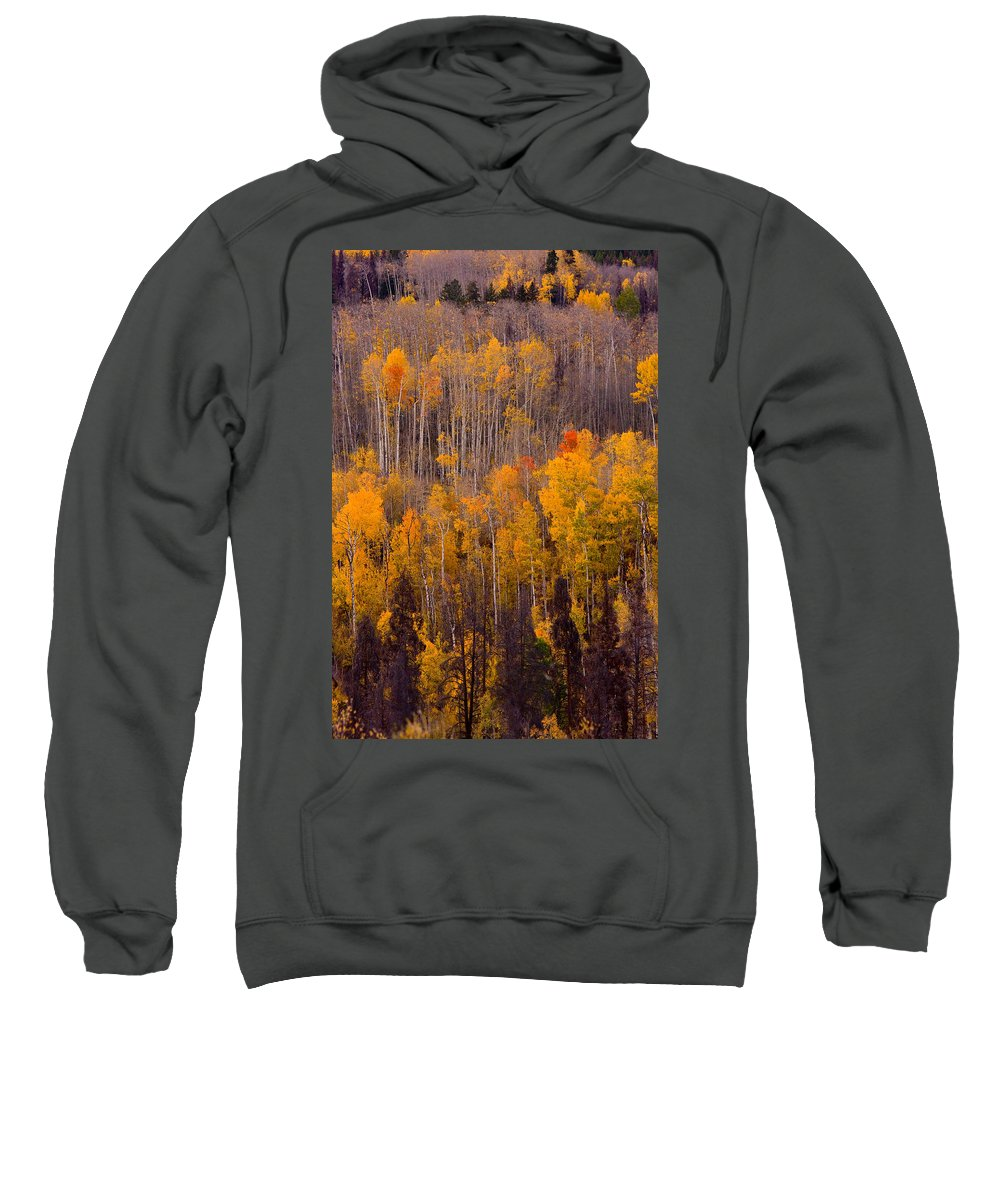 Vertical Sweatshirt featuring the photograph Colorful Colorado Autumn Landscape Vertical Image by James BO Insogna